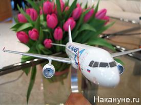 самолет airbus-320 авиакомпании уральские авиалинии макет|Фото: Накануне.ru