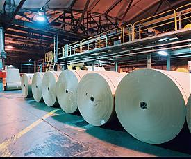 целлюлозно-бумажный комбинат цбк бумага рулон|Фото: www.ilimpulp.ru