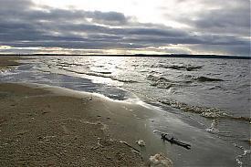 река обь берег|Фото: www.ikz.ru