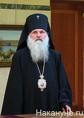 викентий архиепископ екатеринбургский и верхотурский|Фото: Накануне.ru