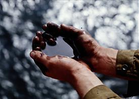 нефть руки разлив авария утечка|Фото: nnm.ru