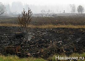 вижай сгоревший поселок|Фото: Накануне.ru