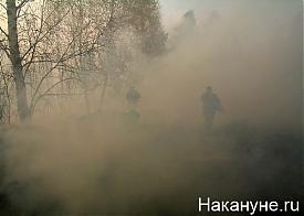 лесной торфяной пожар дым смог Фото: Накануне.ru