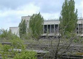 Припять зона отчуждения деревья|Фото: http://pripyat.com/ru/