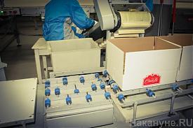 СладКо конвейер конфеты фабрика упаковка|Фото: Накануне.RU