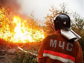 МЧС лесные пожары|Фото:lentaregion.ru