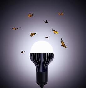 Оптоган лампа Прохоров|Фото:baltinfo.ru