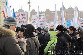 митинг 28 января|Фото: Накануне.RU