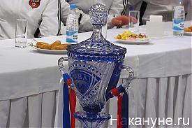Кубок ФНЛ Фото: Накануне.RU