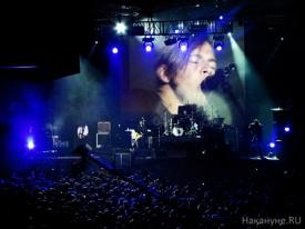 концерт Цой жив, группа Мумий Тролль, Илья Лагутенко Фото: Накануне.RU