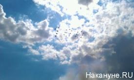 авиашоу, столетие ВВС РФ, Жуковский|Фото:Накануне.RU