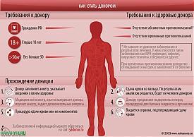 инфографика как стать донором, сдача крови|Фото: Накануне.RU