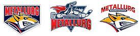 хоккейный клуб Металлург логотип|Фото: pravmin74.ru/