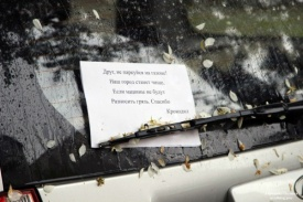 парковка, крокодил|Фото:http://uralblog.pro