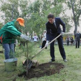 Юревич посадил дерево|Фото: gubernator74.ru