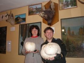 огромные грибы|Фото: администрация Аши