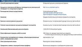 администрация, Ройзман, машина|Фото: zakupki.gov.ru