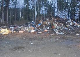мусор, свалка Первоуральск|Фото: форум e1