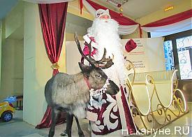 День рождения Деда Мороза, уральская резиденция Деда Мороза, Дед Мороз|Фото: Накануне.RU