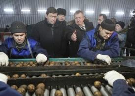 овощехранилище, картофель, куйвашев|Фото: пресс-служба губернатора