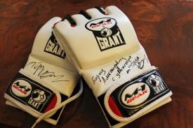 ММА-перчатки Федор Емельяненко автограф|Фото: gubernator74.ru