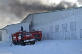 пожар Равис птицефабрика|Фото: ГУ МЧС РФ по Челябинской области