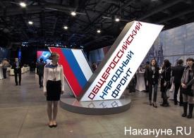 общероссийский народный фронт|Фото: Накануне.ru
