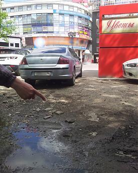 Ройзман, грязь, блогеры, уборка|Фото: pavel-vasilev.livejournal.com