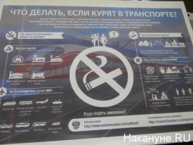 что делать если курят в транспорте Фото: Накануне.RU