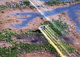 Вьетнам, ВВС США, агент оранж, дефолиант, химическая война|Фото: