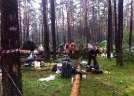 Ильменка, ураган, дерево, Ильменский фестиваль Фото: