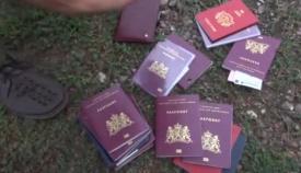 Паспорта, малазийский боинг, крушение, ДНР Фото: