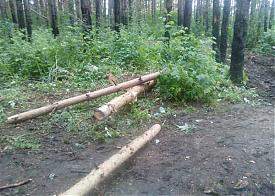 пикет, УНЦ, вырубка парка, строительство|Фото: e1.ru