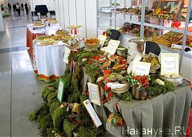 Агропромышленный форум, выставка|Фото: Накануне.RU