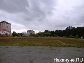 дубровский голосование поле|Фото: