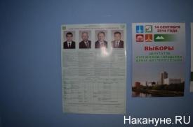 кандидаты голосование Курган плакат|Фото: Накануне.RU