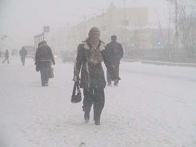  Фото: foto.gazetazp.ru