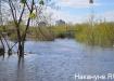 половодье паводок наводнение(2017) Фото: Фото:Накануне.RU