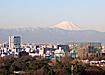япония токио фудзияма|Фото: Накануне.ru