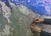 карта определение зоны поиска поиски оперативный штаб|Фото: уральского управления росаэронавигации