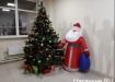 елка, Новый год, Дед Мороз (2019) | Фото: Накануне.RU