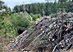 Свалка отходов в Новоасбесте (2021) | Фото: Владимир Инжеватов