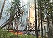 Пожар в заповеднике Денежкин камень (2021) | Фото: facebook.com / Anna Kvashnina