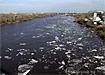 река тура ледоход паводок|Фото: Накануне.ru