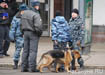 лубянка метро москва кинолог теракт|Фото: Накануне.RU