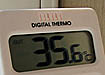жара температура зной +35,6|Фото: Накануне.ru