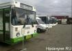 Автобус, колонна, ивантеевка|Фото: Накануне.RU