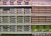 продукты, магазины, цены, яйца (2015) | Фото: Накануне.RU