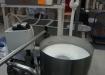 Салехардагро, молоко, производство молока (2015) | Фото: накануне.ru