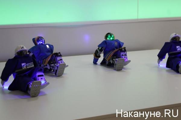 робот, дни хмао в совете федерации|Фото: Накануне.RU